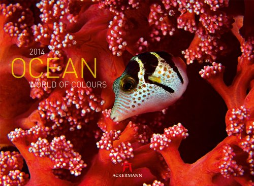 9783838414997: Ocean - World of Colours 2014