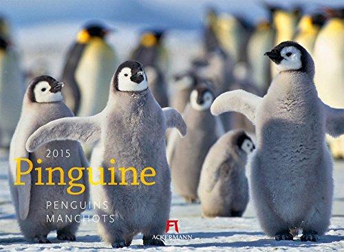 9783838415895: Pinguine 2015