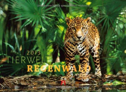 9783838423005: Tierwelt Regenwald 2013