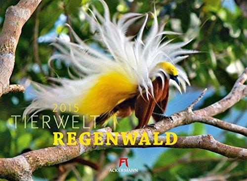9783838425009: Tierwelt Regenwald 2015
