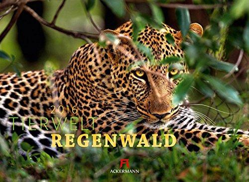 9783838426006: Tierwelt Regenwald 2016