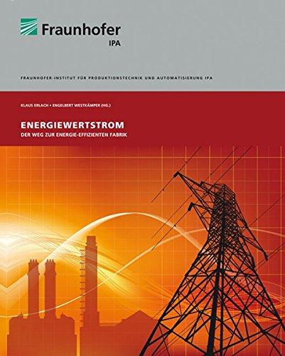 9783839600108: Energiewertstrom