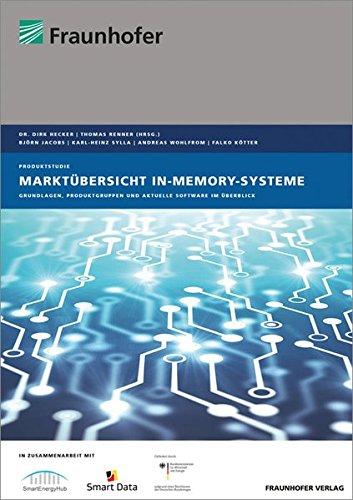9783839609736: Marktübersicht In-Memory-Systeme: Grundlagen, Produktgruppen und aktuelle Software im Überblick