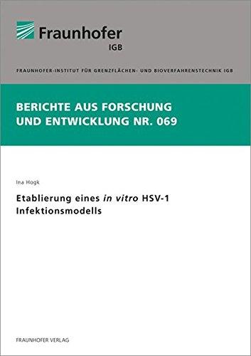 Etablierung eines in vitro HSV-1 Infektionsmodells.: Ina Hogk