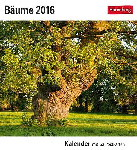 9783840012204: Bäume 2016