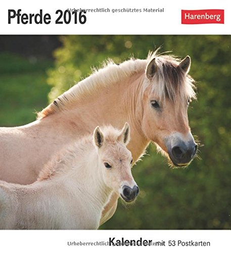 9783840012310: Pferde 2016