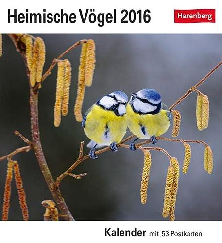 9783840013447: Heimische Vögel 2016: Kalender mit 53 Postkarten