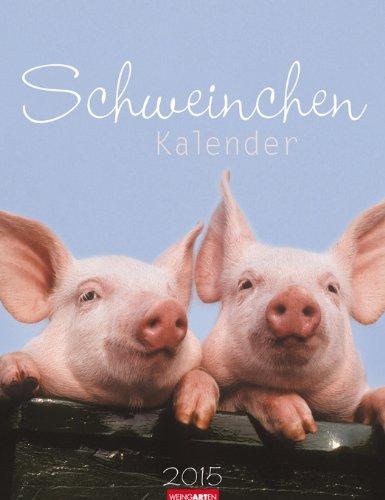 9783840063268: Schweinchen 2015