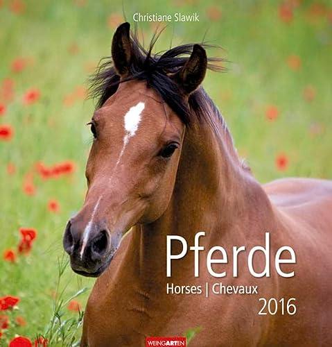9783840064883: Pferde 2016
