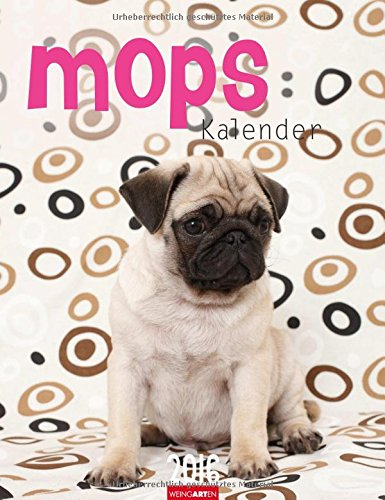 9783840065637: Mops Kalender 2016