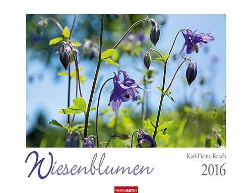 9783840066450: Wiesenblumen 2016