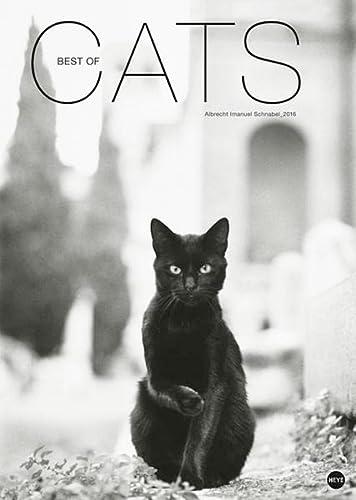 9783840133534: Best of Cats 2016