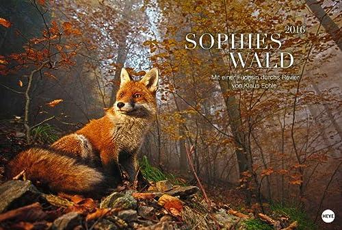 9783840140495: Sophies Wald. Mit einer Füchsin durchs Revier 2016