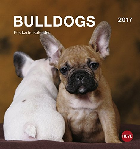 9783840143489: Bulldogs 2017 Postkartenkalender