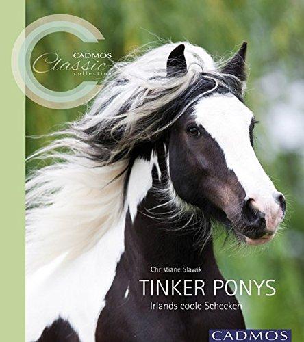 9783840400261: Tinker Ponys: Irlands coole Schecken