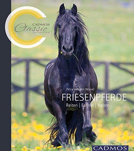Friesenpferde: Petra van den Heuvel