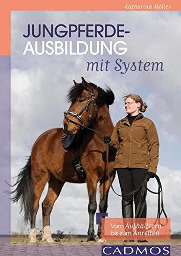 9783840410604: Jungpferdeausbildung mit System: vom Aufhalftern bis zum Anreiten