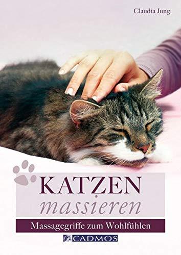 9783840440151: Katzen massieren