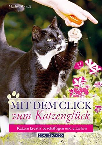 9783840440175: Mit dem Click zum Katzenglück: Katzen kreativ beschäftigen und erziehen