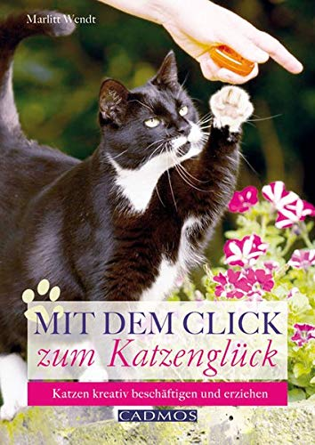 9783840440175: Mit dem Click zum Katzenglück