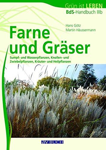 9783840482038: Farne und Gräser: BdB-Handbuch IIIb