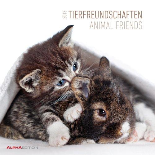 9783840731105: Tierfreundschaften - Animal Friends 2013 Broschürenkalender