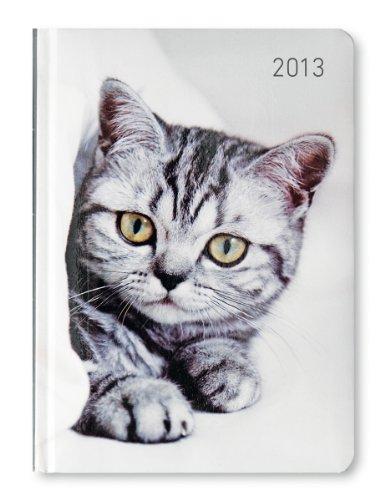 9783840738326: Ladytimer Cat 2013