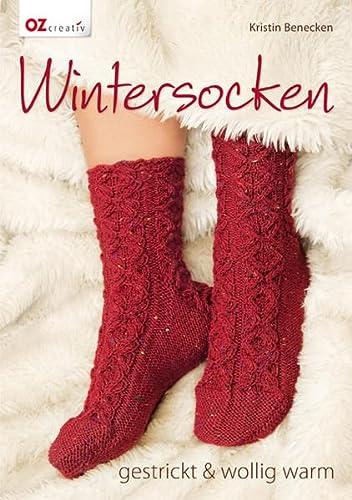 9783841061546: Wintersocken