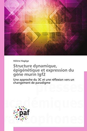 9783841631275: Structure dynamique, épigénétique et expression du gène murin Igf2 (Omn.Pres.Franc.) (French Edition)