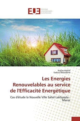 9783841660350: Les Energies Renouvelables au service de l'Efficacité Energétique (Omn.Univ.Europ.) (French Edition)