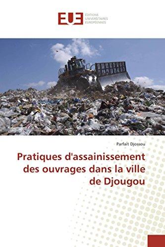 9783841662521: Pratiques d'assainissement des ouvrages dans la ville de Djougou