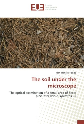 The soil under the microscope: The optical examination of a small area of Scots pine litter (Pinus ...