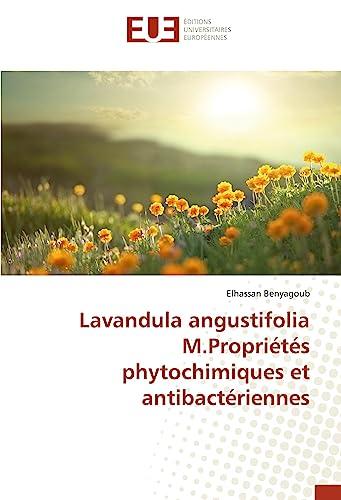 Lavandula angustifolia M.Proprià tàs phytochimiques et: Benyagoub Elhassan