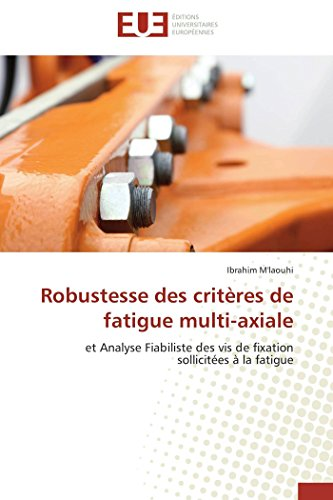 9783841737274: Robustesse des critères de fatigue multi-axiale (Omn.Univ.Europ.) (French Edition)