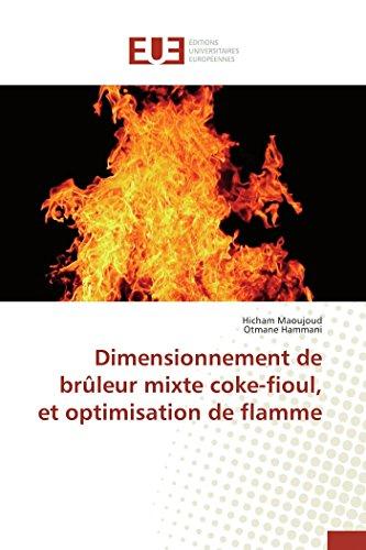 9783841743411: Dimensionnement de brûleur mixte coke-fioul, et optimisation de flamme