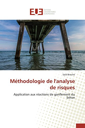 9783841747693: Methodologie de L'Analyse de Risques