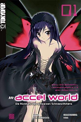 9783842011540: Accel World - Novel 01