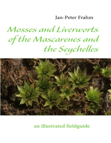 Mosses and Liverworts of the Mascarenes and the Seychelles: An Illustrated Fieldguide - Frahm, Jan-Peter