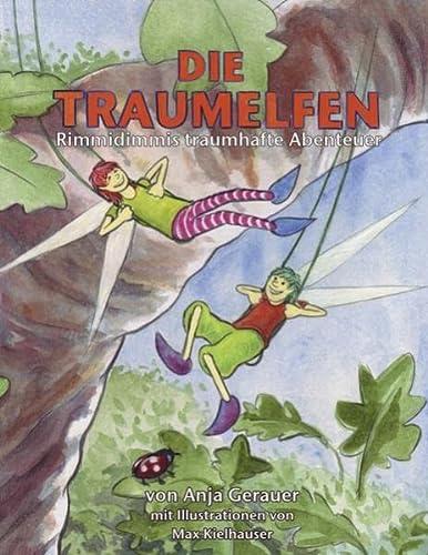 9783842382077: Die Traumelfen: Rimmidimmis traumhafte Abenteuer