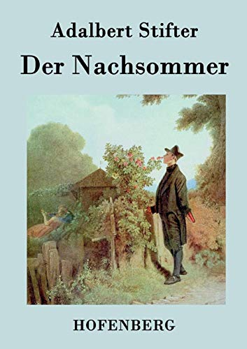 9783843070836: Der Nachsommer (German Edition)
