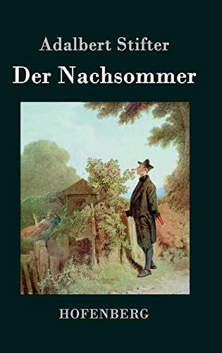 9783843070867: Der Nachsommer (German Edition)