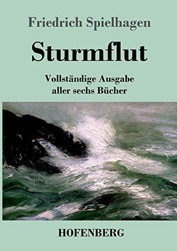 9783843073813: Sturmflut (German Edition)