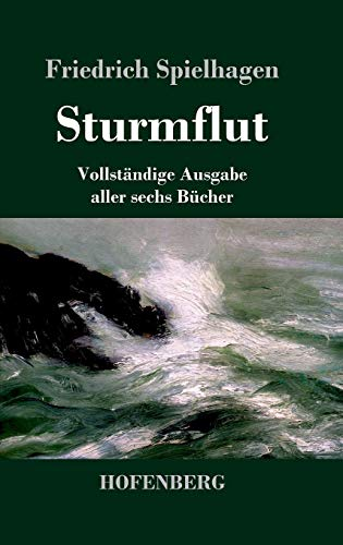 9783843073820: Sturmflut (German Edition)