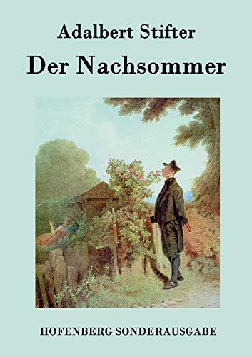 9783843076562: Der Nachsommer (German Edition)
