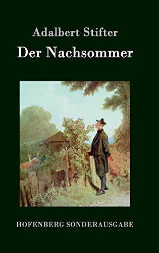 9783843076579: Der Nachsommer (German Edition)