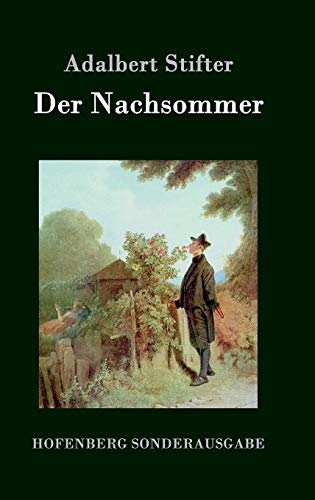9783843076579: Der Nachsommer (German Edition)