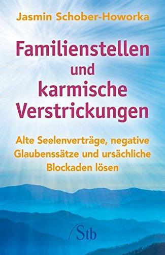 9783843430517: Familienstellen und karmische Verstrickungen: Alte Seelenverträge, negative Glaubenssätze und ursächliche Blockaden lösen