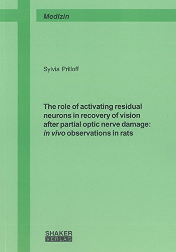 9783844001068: The Role of Activating Residual Neurons in Recovery of Vision After Partial Optic Nerve Damage: In Vivo Observations in Rats (Berichte aus der Medizin)