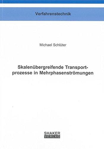 Skalenübergreifende Transportprozesse in Mehrphasenströmungen: Michael Schlüter