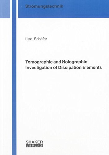 Tomographic and Holographic Investigation of Dissipation Elements: Lisa Schäfer